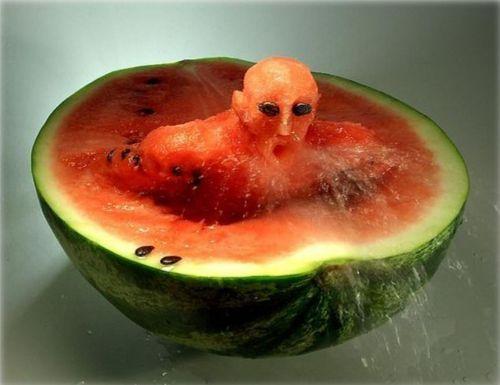 Criatividade com melão