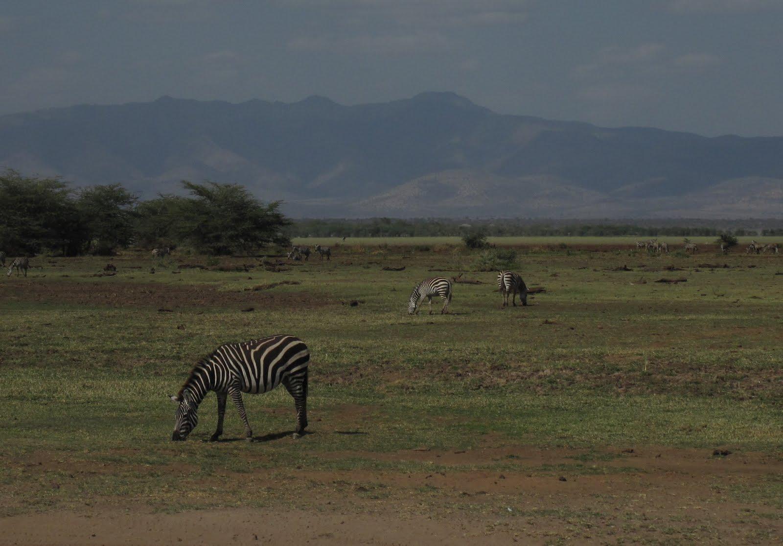 Breve fra Afrika