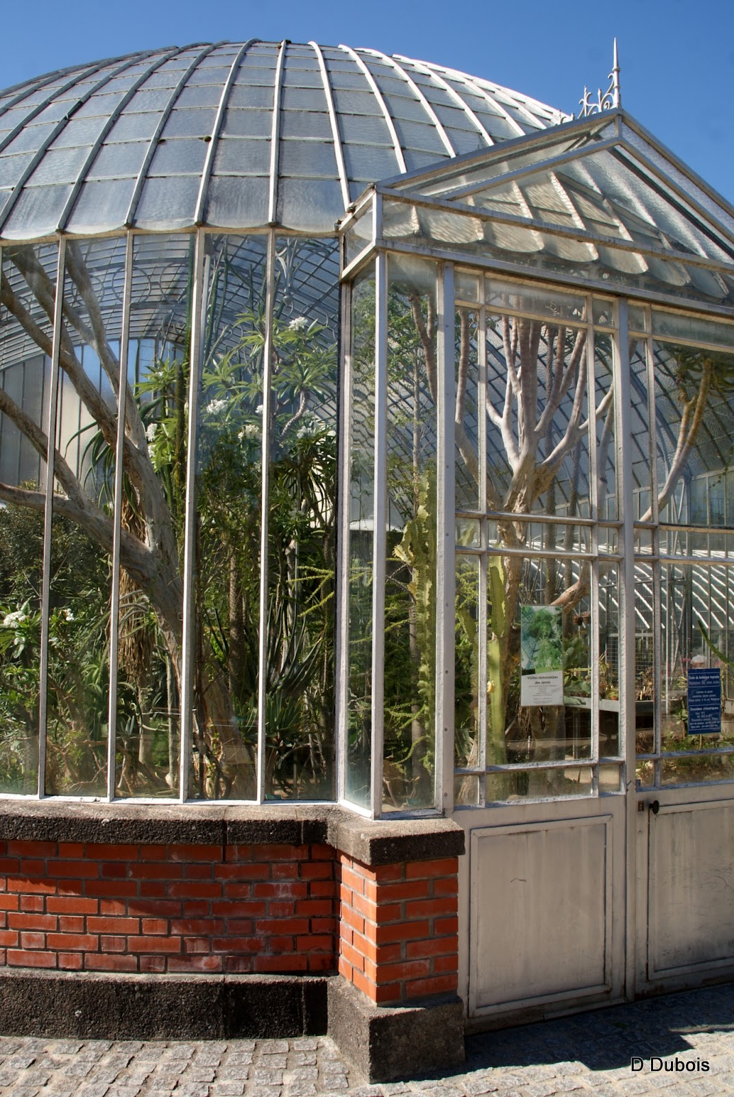 Serre du jardin des plantes de Nantes