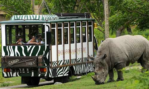 """Liburan Ala """"Jurassic Park"""" Di Taman Safari Bogor"""