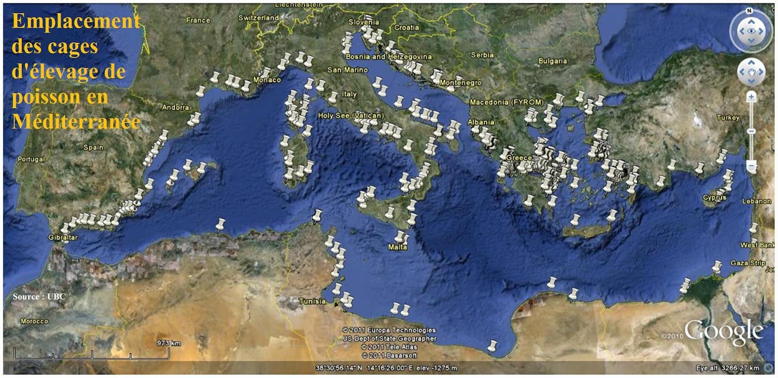 Google image  - Page 3 Mediterranee+aquaculture+nombre+cage+bar+daurade+thon+maigre