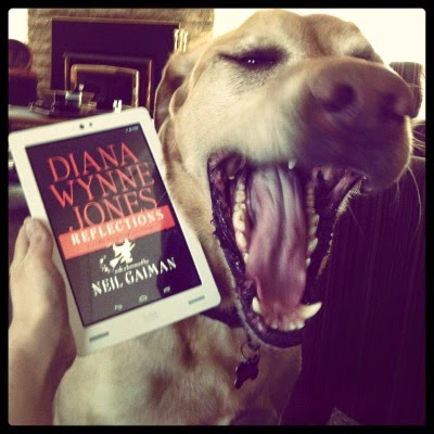 Buster lets out a mighty roar. Beside his head, a pale hand holds a white Kobo with Reflections's predominantly black cover on its screen. The author's name appears in large, red letters, with a white silhouette of a witch flying beneath them.