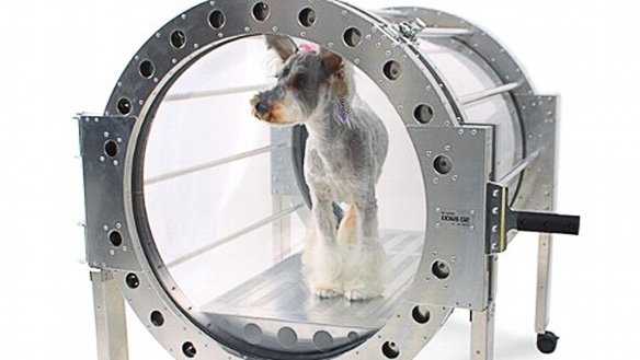 Doggie Hyperbaric Chamber photo by Air Press