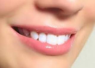 Bibir Merah