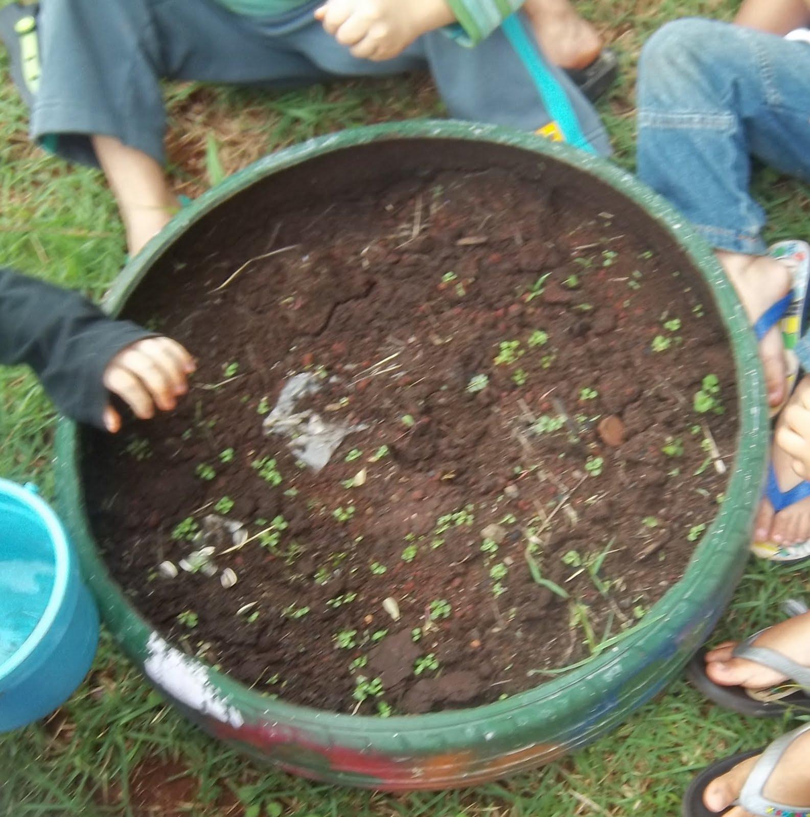 horta e jardim em pneus : horta e jardim em pneus:JARDIM FLORIDO: JARDIM DE PNEU