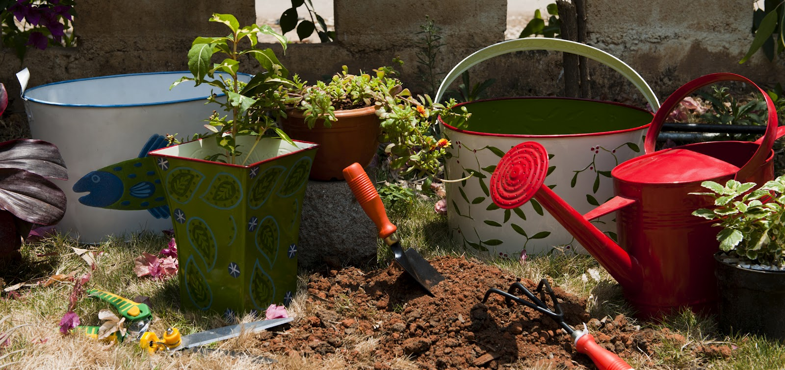 Chic Gardening Accessories!! - Allwhatshewants