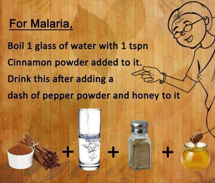 Malaria home remedy