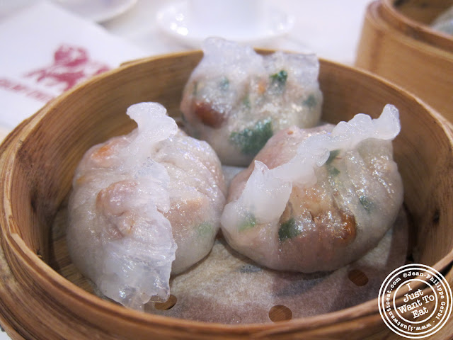 Image of Spinach and shrimp dumplings at the Golden Unicorn in Chinatown NYC, New York