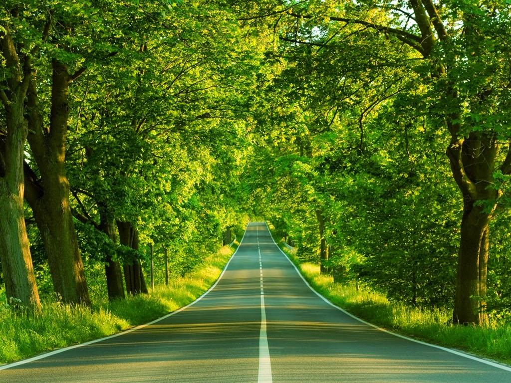 Beautiful Straight Road HD Wallpaper