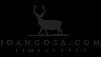 Joan Gosa Timescapes