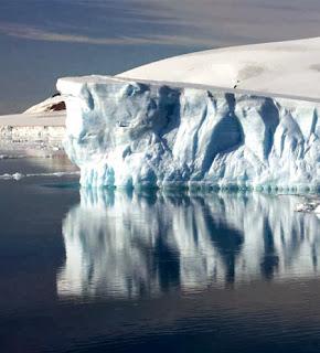 Nunavut Animals