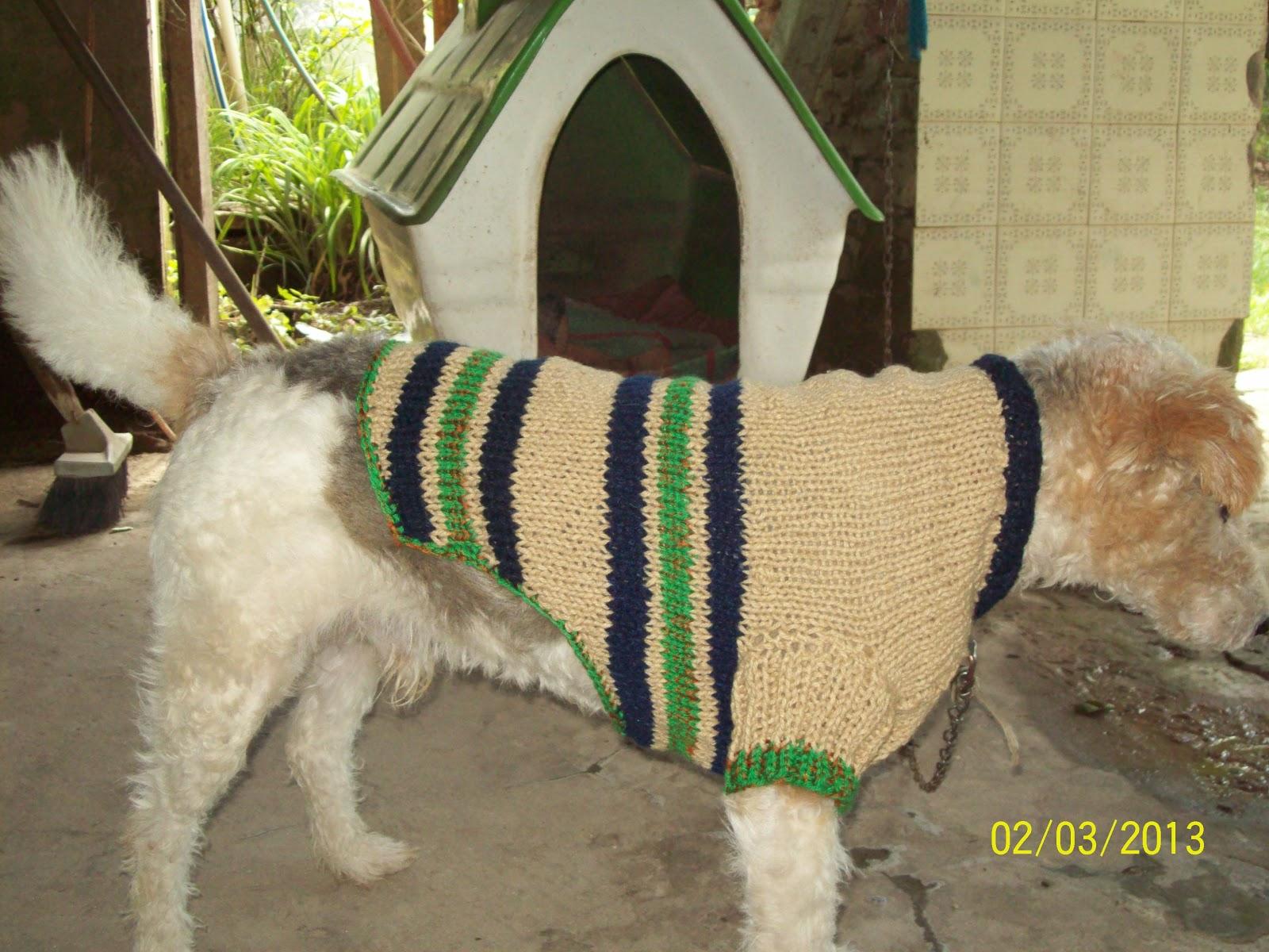 Asombroso Patrón De Ganchillo Suéter Del Perro Para Los Perros ...