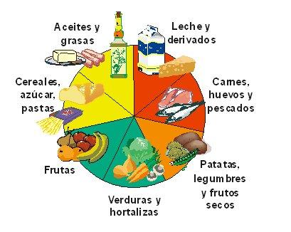Grupo 7: Son los alimentos que contienen principalmente lípidos