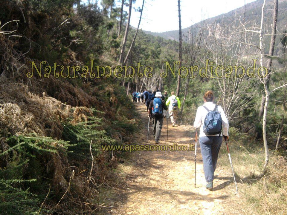 Finalmente la nuova carta escursionistica del monte pisano il blog dell 39 associazione ampliamente - Diversi tipi di turismo ...