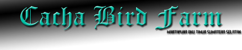 Cacha Bird Farm