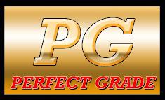 (PG) Perfect Grade 1/60