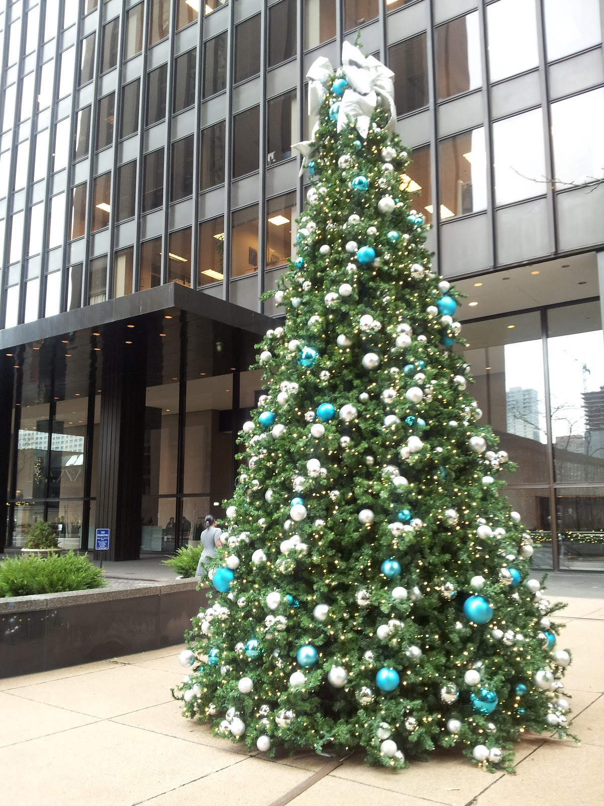 Notes from The Bubble: Christmas in Chicago