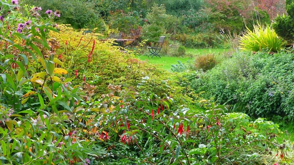 Le jardin de brigitte alsace petit tour du jardin en ce for Jardin octobre