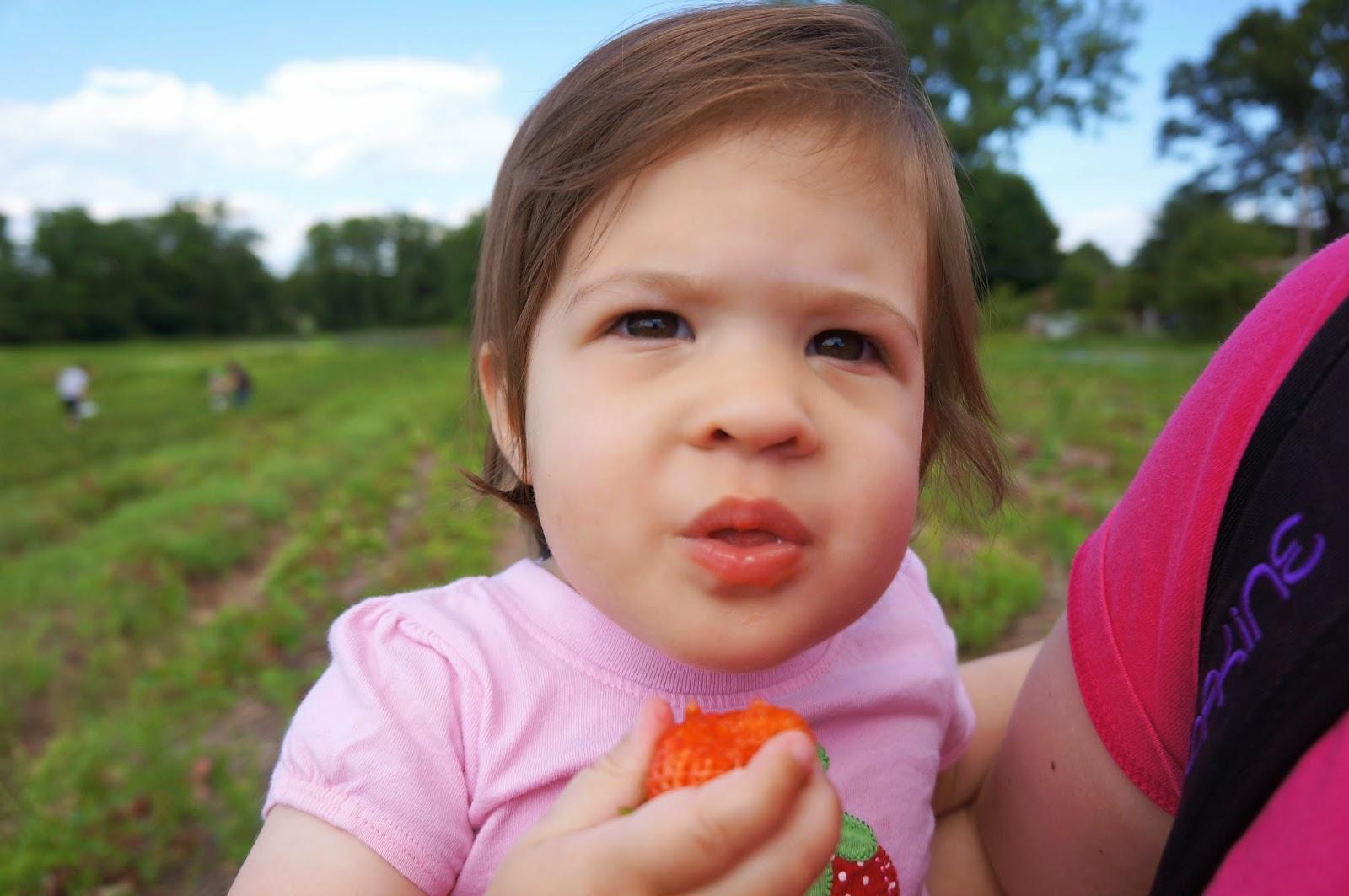 Strawberry Picking! hellokelcey.blogspot.com