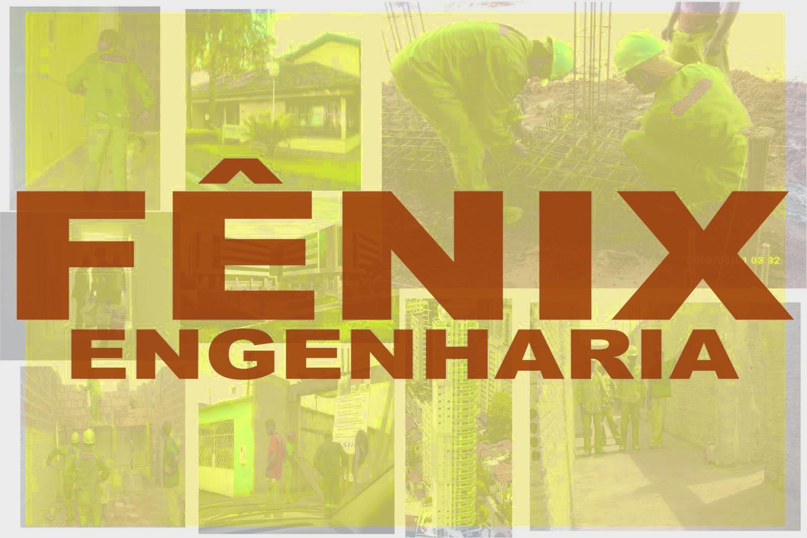 FENIX ENGENHARIA