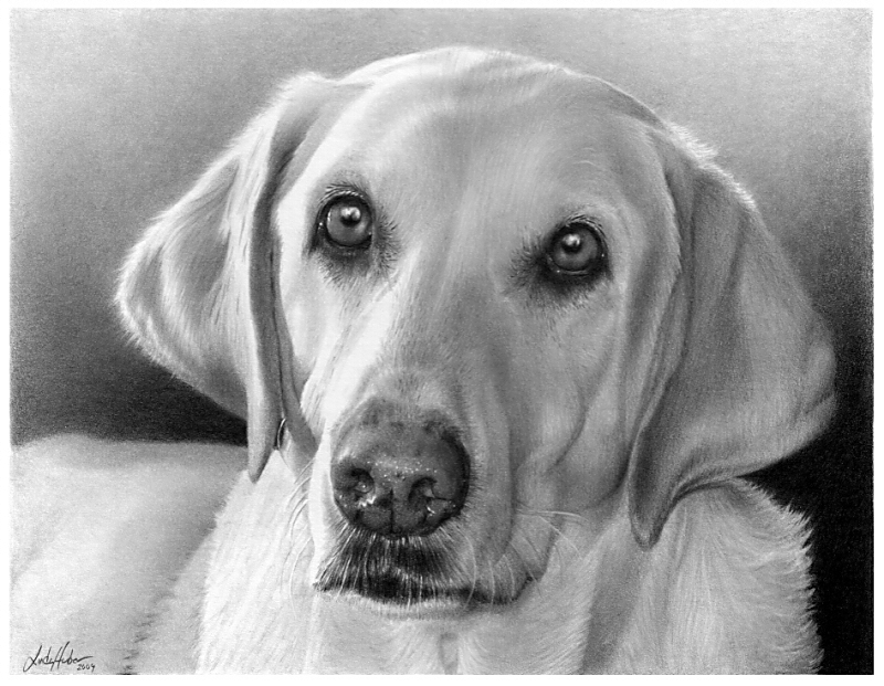 11-Linda-Huber-Hyper-Realistic-Pencil-Graphite-Drawings-www-designstack-co