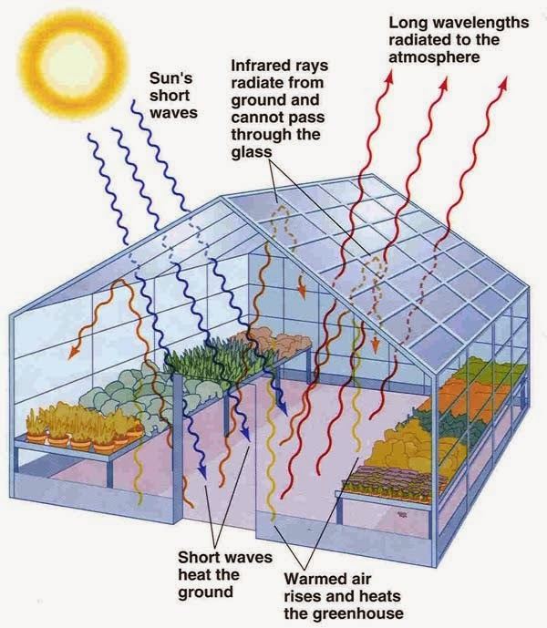 Expedition earth enhanced greenhouse effect for Green housse effect