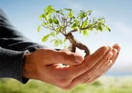 menanam kebaikan