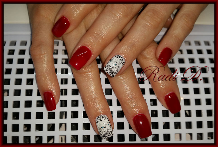 It`s all about nails: Red nails with Wild cats