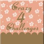 Crazy 4 Challenges