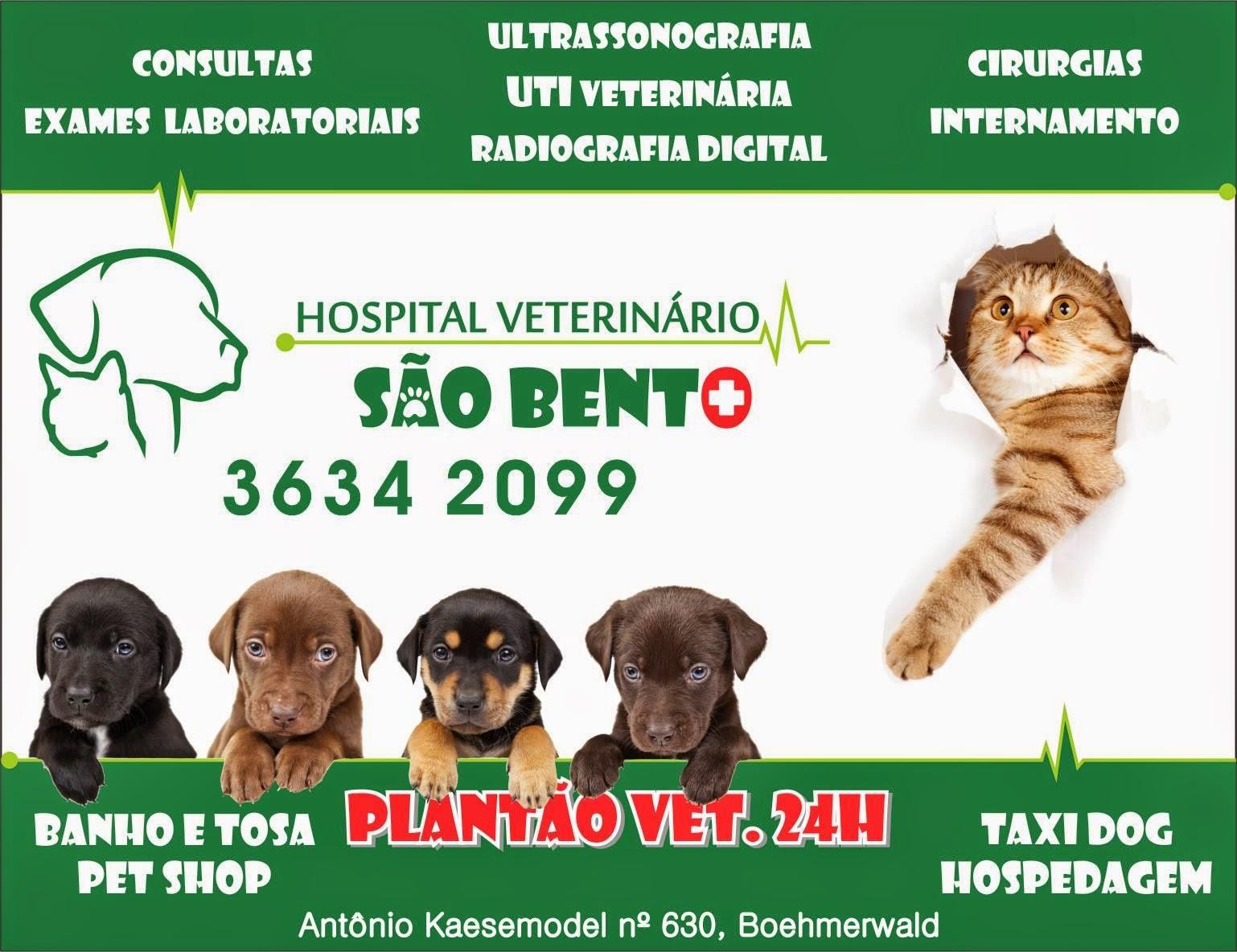 Hospital Veterinário São Bento