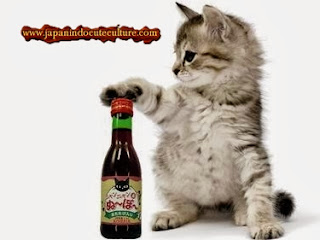 "Jepang Memproduksi ""にゃんにゃんヌーボーワイン"" Wine Khusus Kucing"