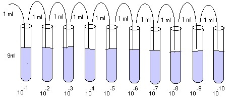 dilution tube Gallery