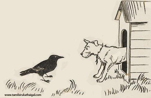 Crow and Dog (காகம், நாய்க்குட்டி)