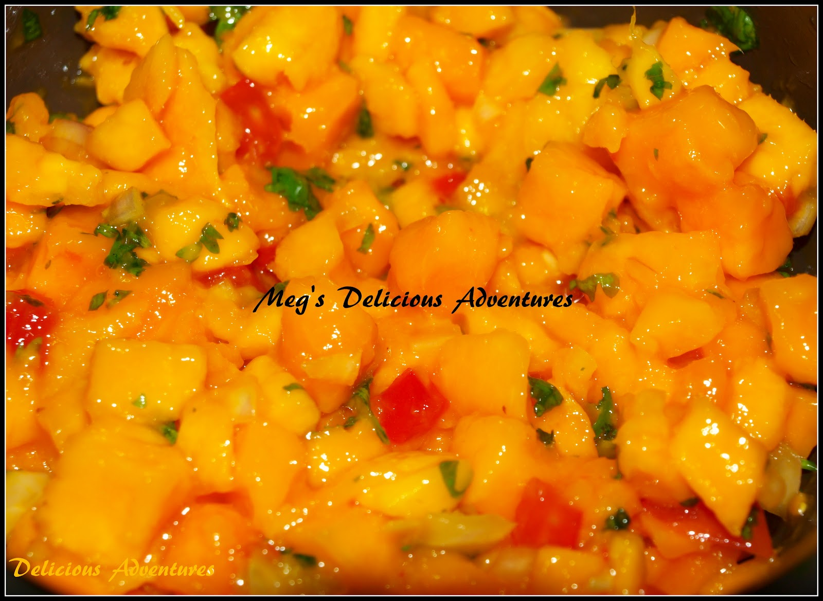 mango salsa mango salsa recipe 2 mangoes ripe 1 2 tomato 1 2 onion ...
