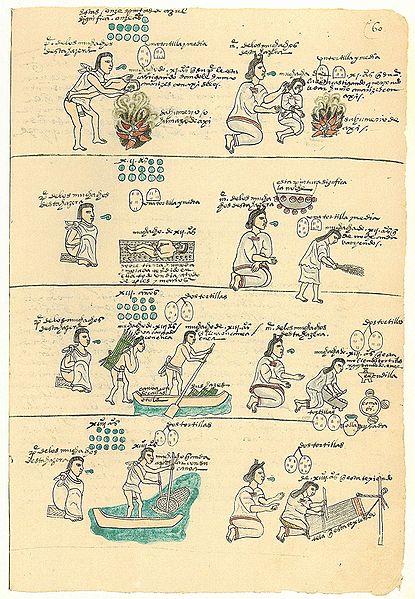 [Bild: 415px-Codex_Mendoza_folio_60r.jpg]