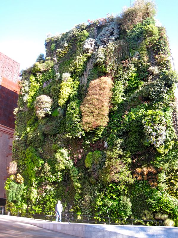 Superieur Hanging Wall Garden On 6 Story Building, Paseo Del Prado, Madrid