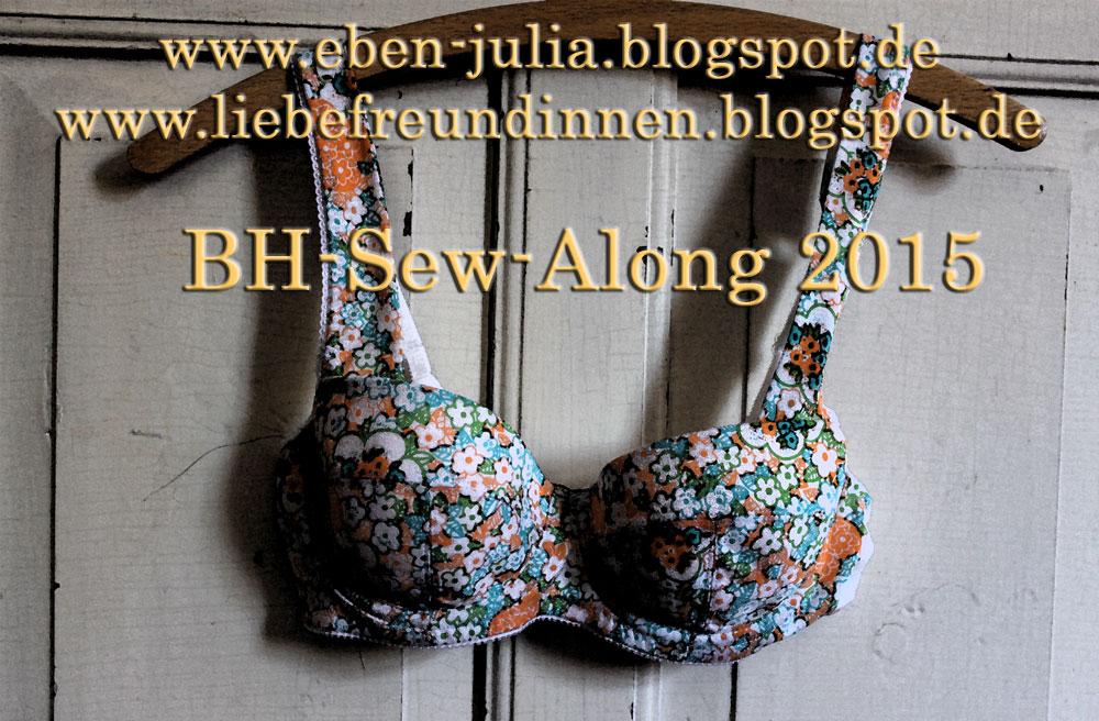 machen statt kaufen: BH Sew Along Teil 1
