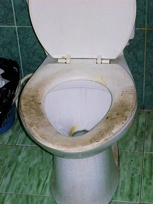 People Does That Because They Are Disgusted With The Fact Sharing Toilet Seat Othersthey Find It Icky And Disgustingso Most Of Them