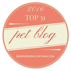 Top Pet Blog Winner 2016