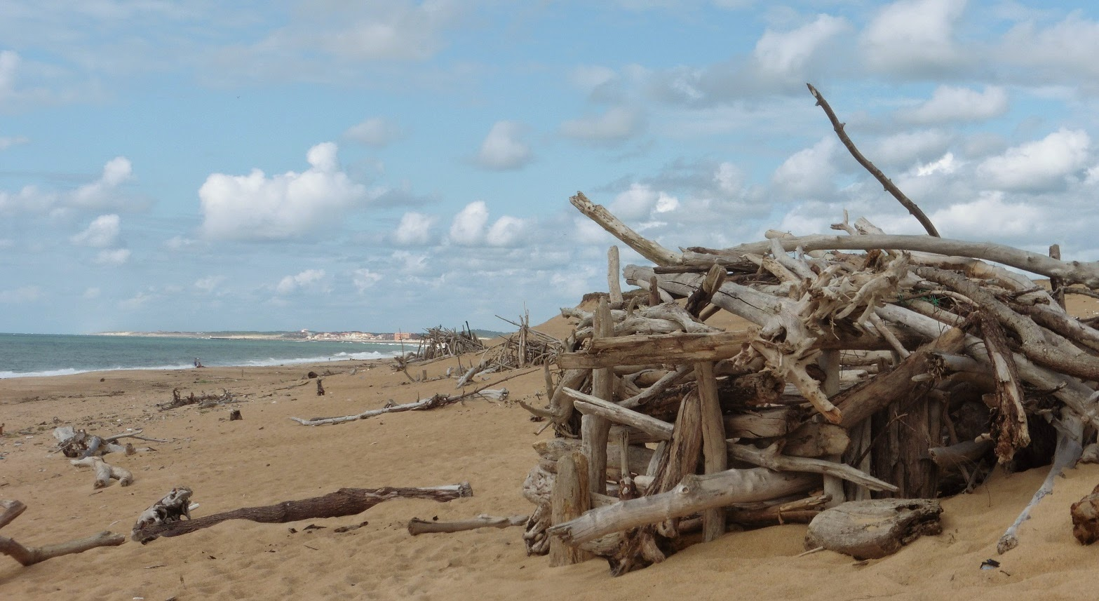 Sur Quelle Plage Trouver Du Bois Flotté le p'tit atelier de pat.: les plages des landes
