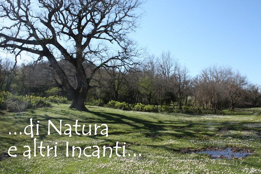 di Natura e altri Incanti