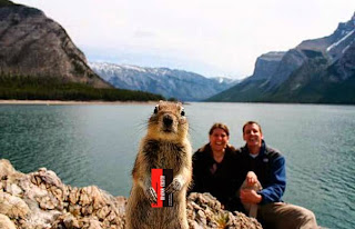 photobombing squirrel holds Yarosh's business card