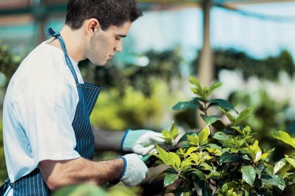 ΚΑΣΤΟΡΙΑ:Πρόσληψη γεωπόνου στον Αγροτικό συνεταιρισμό Πενταβρύσου