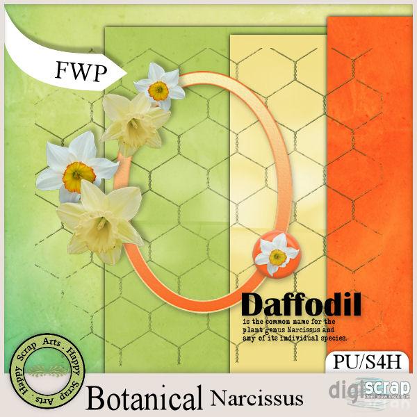 HSA_Botanical_Narcissus_FWP_pv