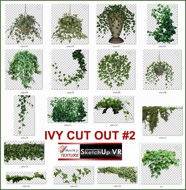 IVY CUT OUT PNG COLLECTION #2 - Vray Sketchup - TUT