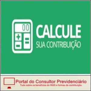 Cálculo da Guia da Previdência Social no Site do INSS.