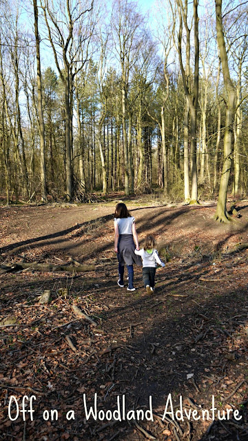 woodland, family walks