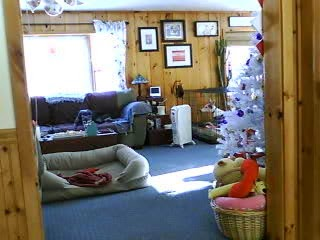 Bettina and Blue from the other web cam