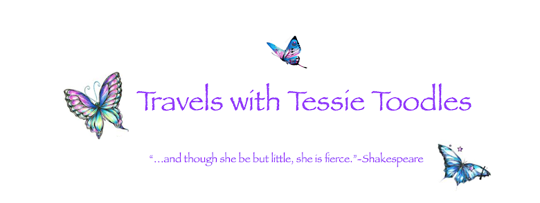 Travels with Tessie Toodles