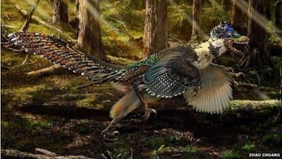 Ancestral de velociraptor era um 'dragão com asas'